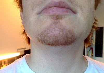 Markus skägg