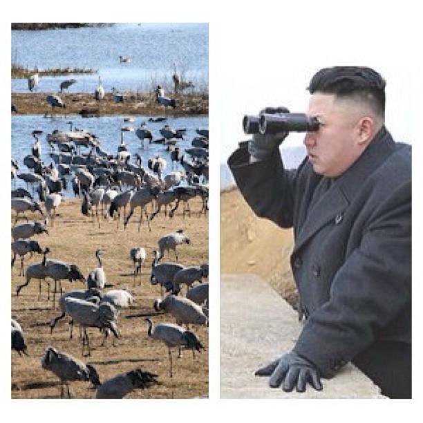 Man vet att våren är här när fågelskådarna flockas kring Hornborgarsjön. Intresset är stort och lockar en del långväga gäster!